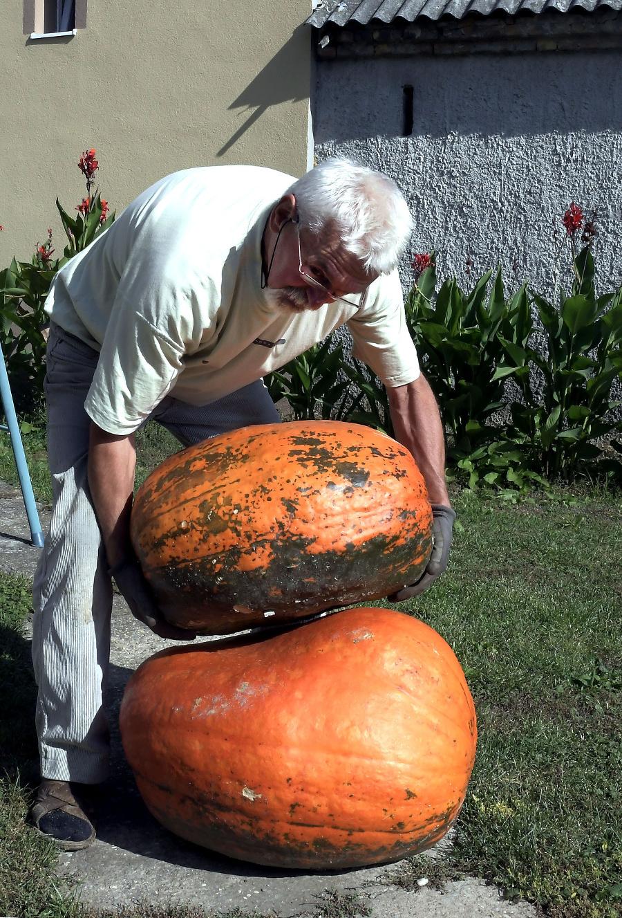 Záhradkár z Čuňova vypestoval