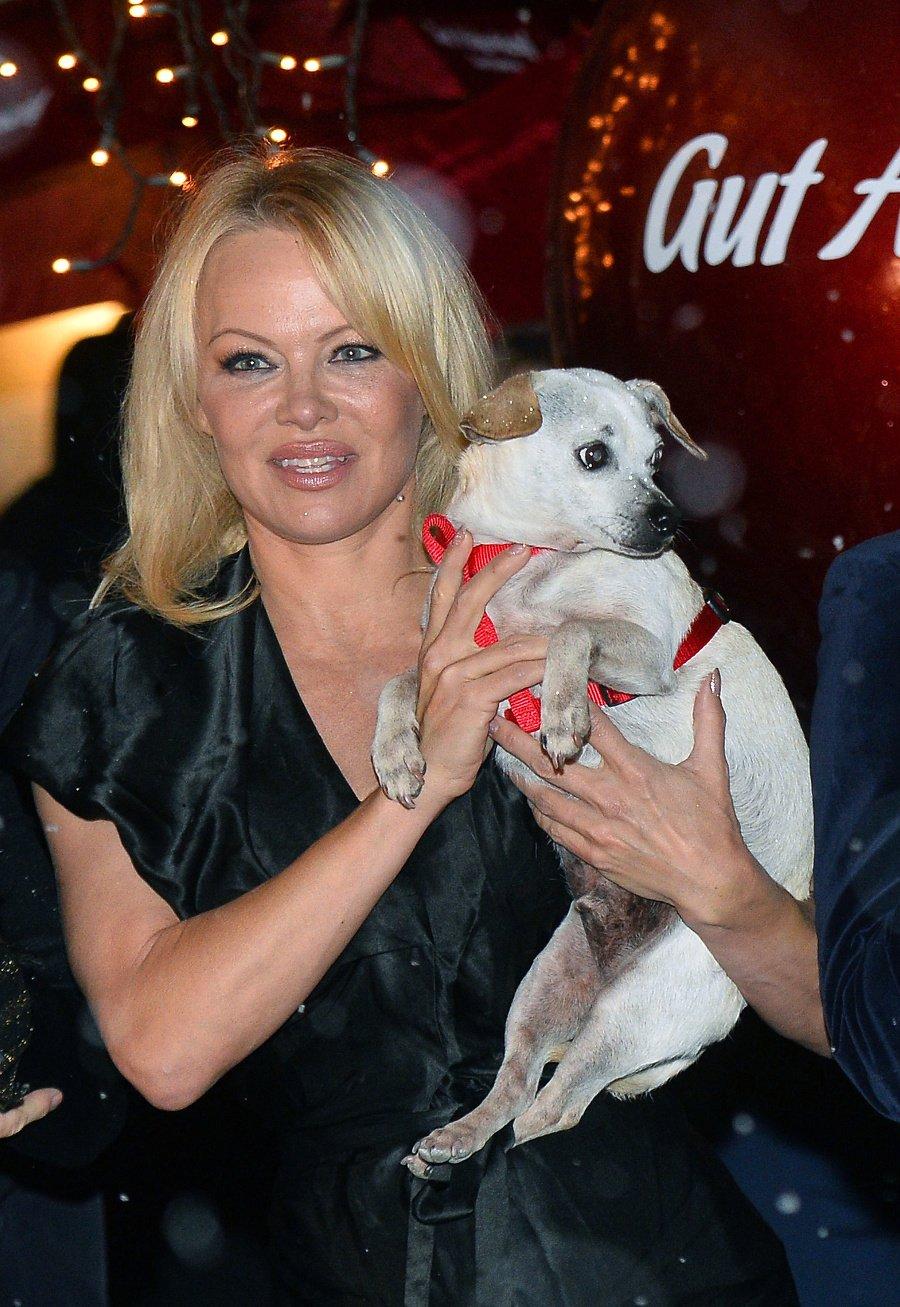 Pamela Anderson (52).