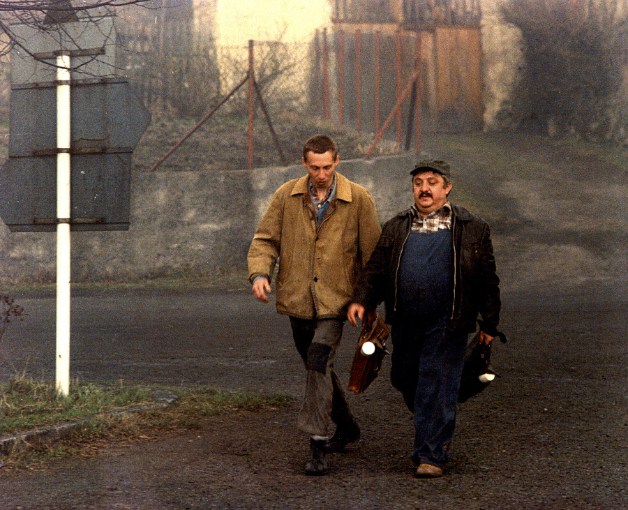 1985 - Labudu si
