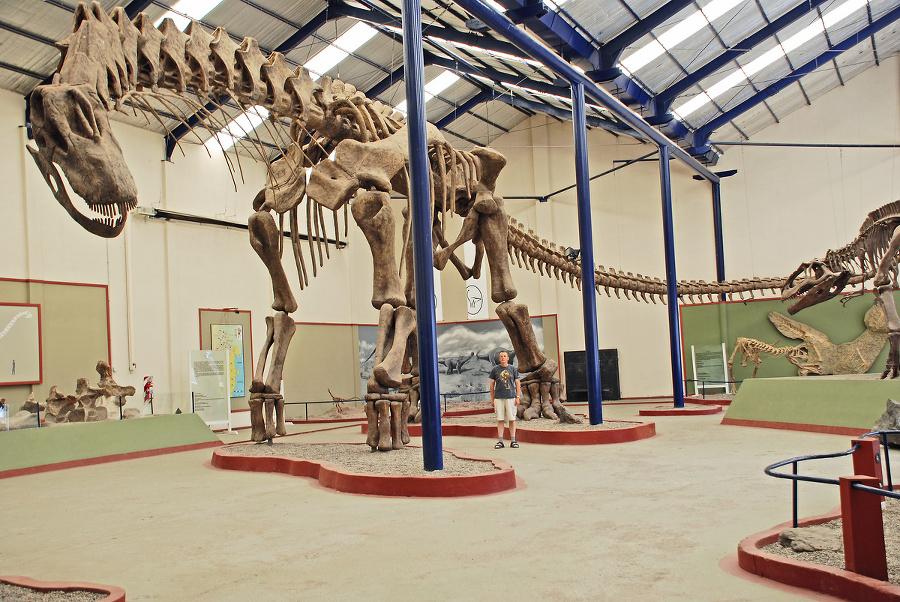 Paleontológ našiel aj vzácne