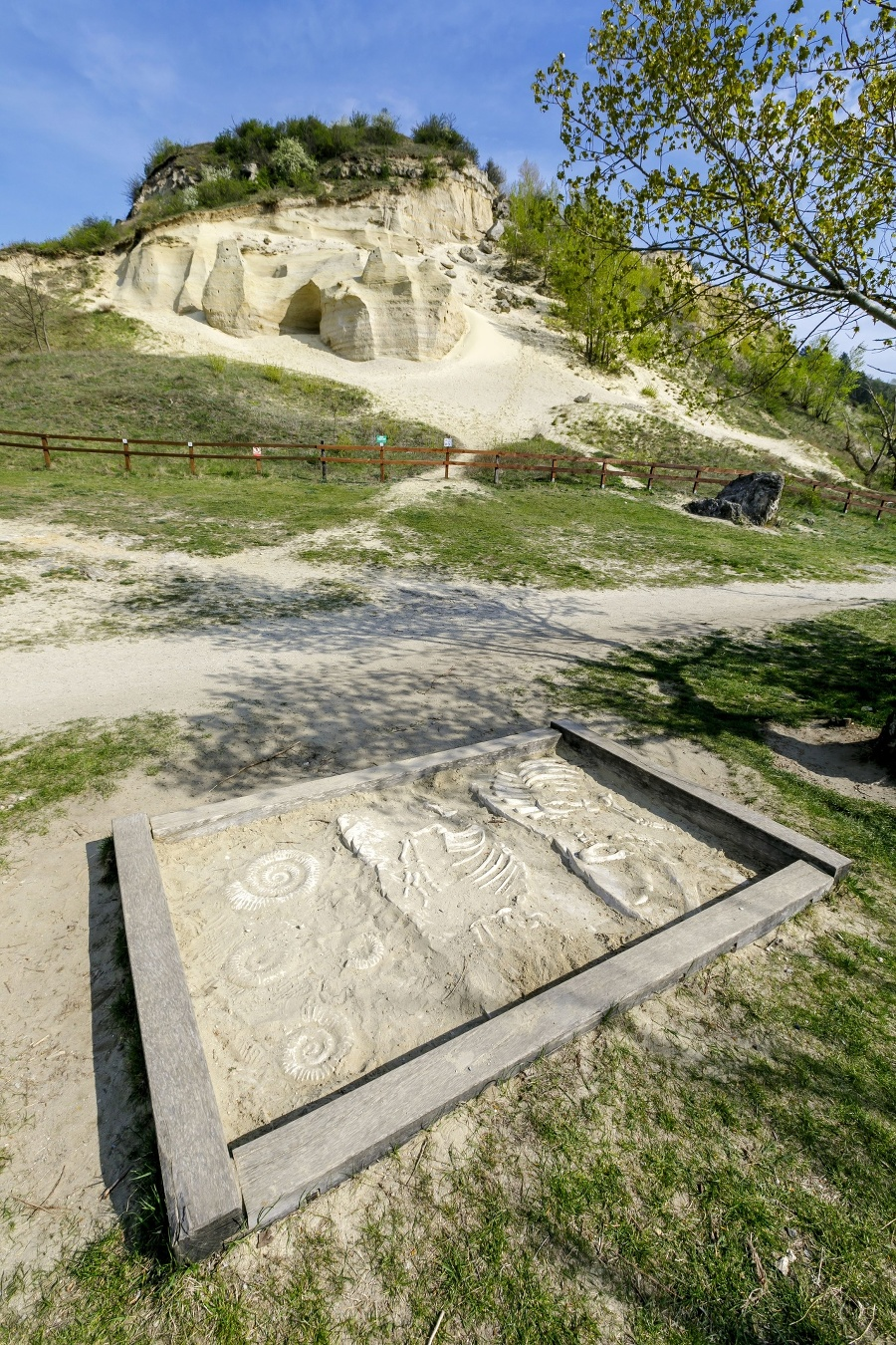 Paleontologická lokalita Sandberg je