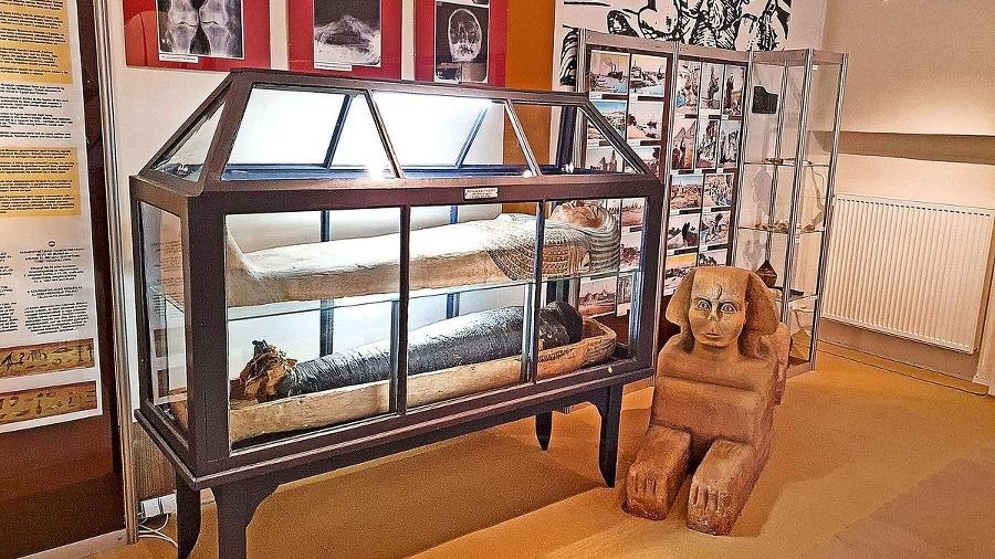 Múmia od bezdetného vdovca