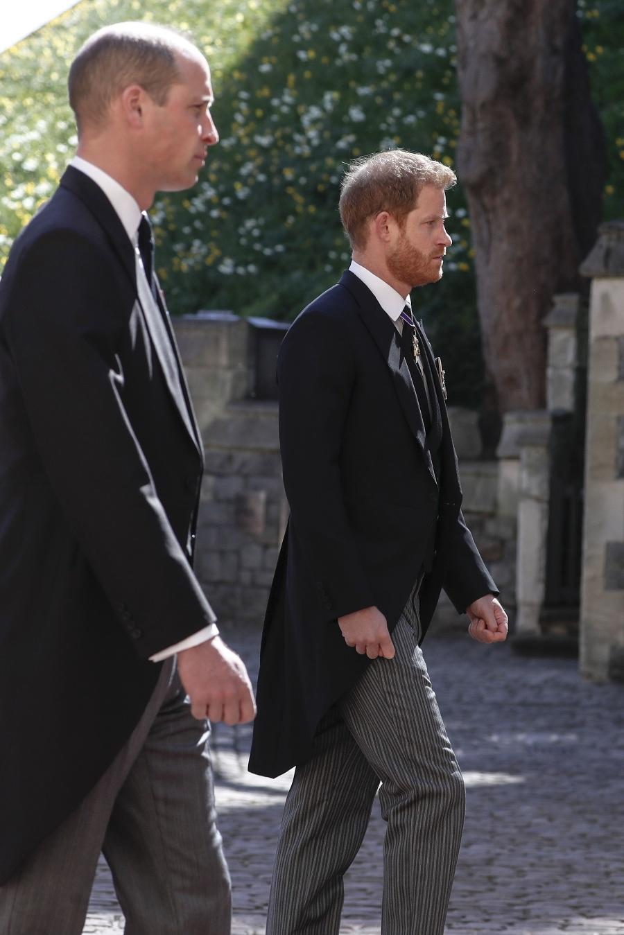 Princovia William a Harry.