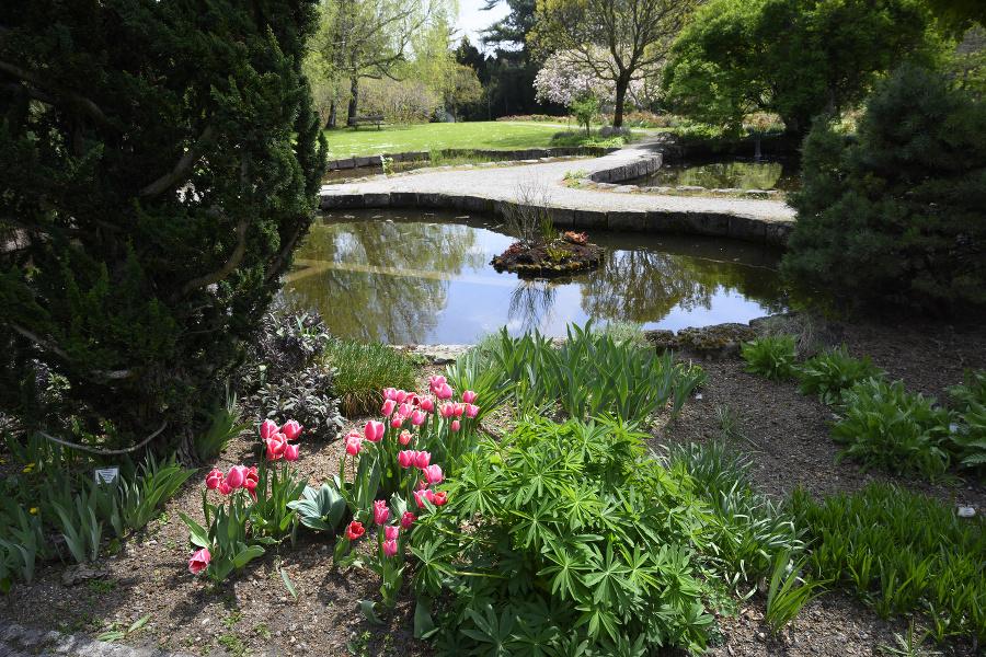 Botanická záhrada je krásna v každom ročnom období,tvrdí jej riaditeľ