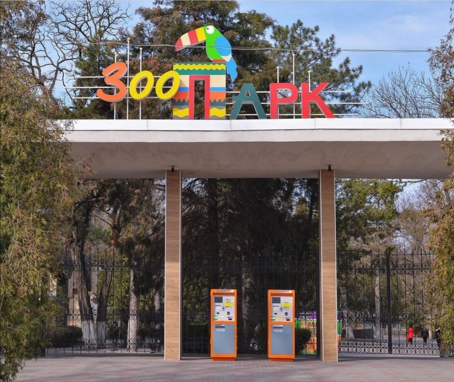 Samca orangutana prevážali do ruskej zoo v novembri 2019.