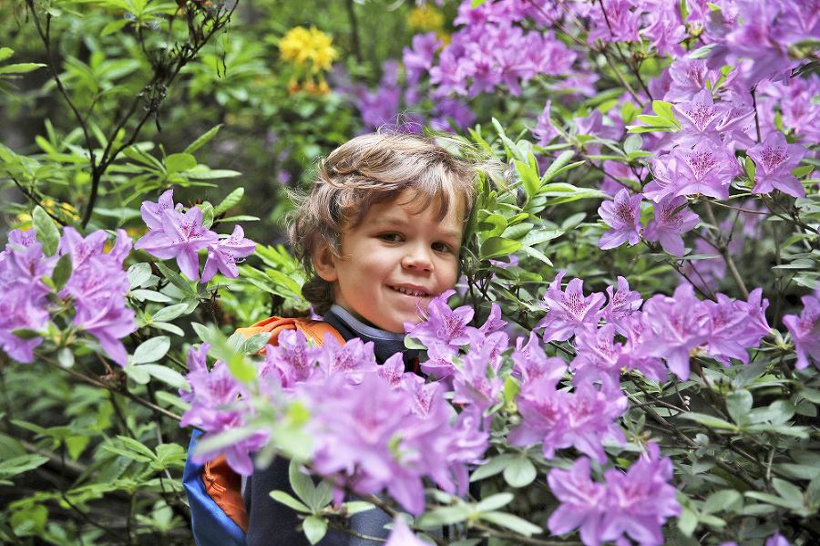 Janko (5) v prekrásne rozkvitnutých