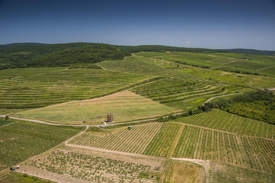 Tokaj je vychýrený vinársky región. Víno tu dotvára nielen zloženie pôdy a veľa slnka, ale aj jedinečné tufové pivnice. Pri obci Malá Tŕňa je uprostred vinohradov štýlová rozhľadňa v tvare suda.