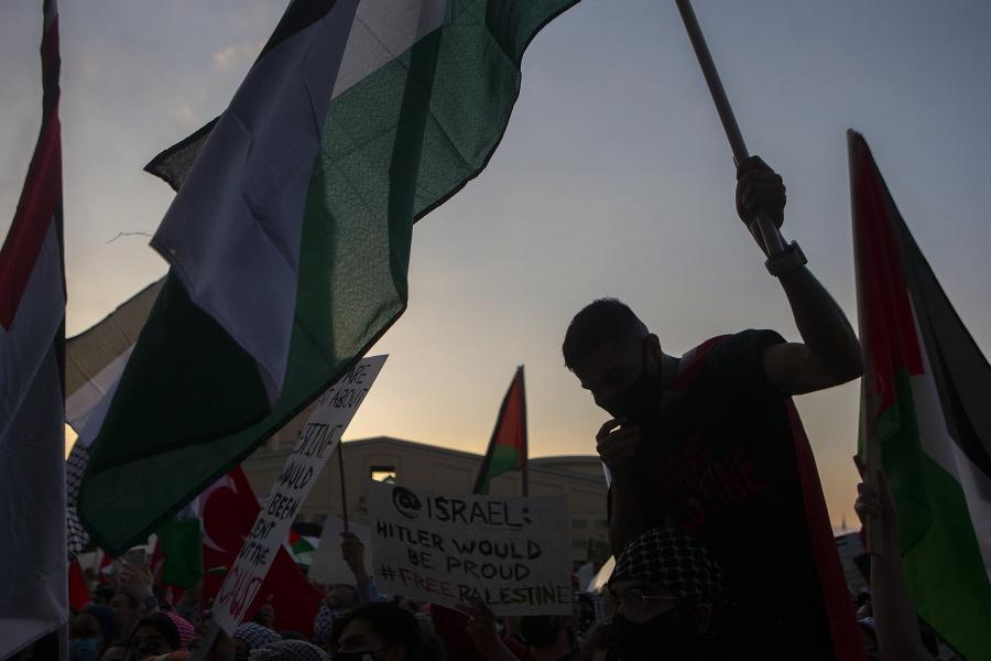 Palestínski stúpenci na proteste