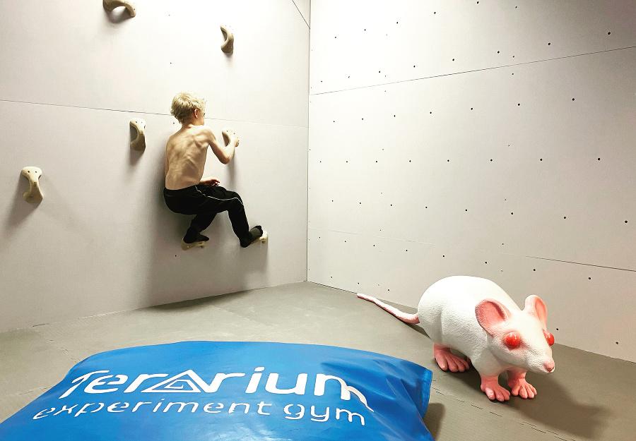 V experimentálnej galérii deti