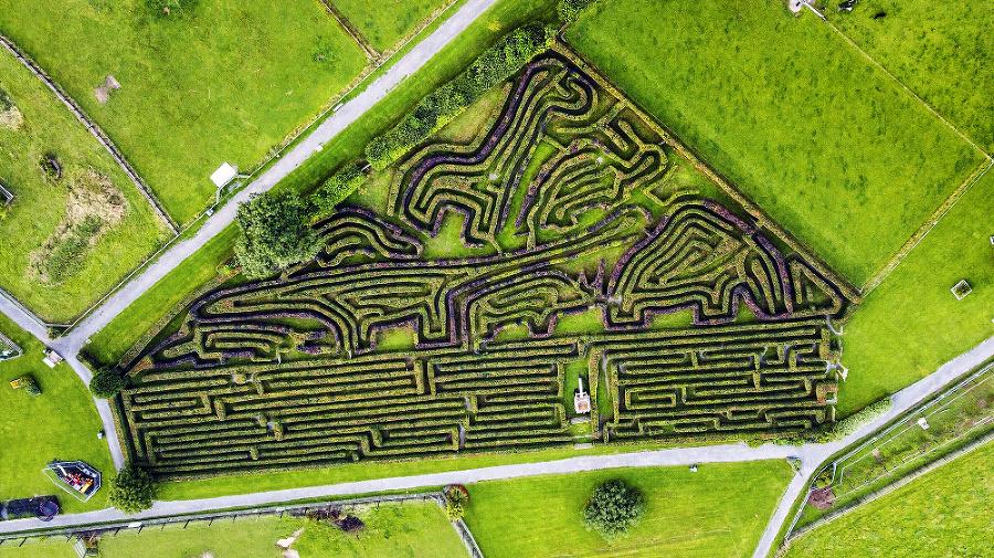 Pri pohľade zhorav labyrinte vidieť ornamenty zvierat.