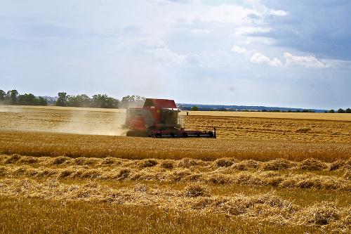 Poľnohospodárstvo: Stalo sa jedným