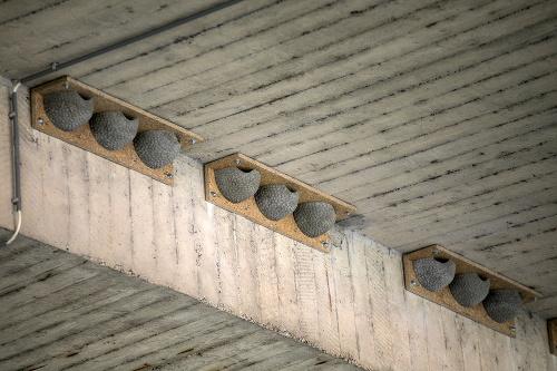 Takéto umelé hniezda pre