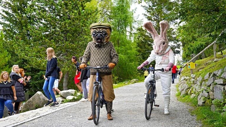 Tancujúci buldoček prinútil ľudí vyťahovať mobily, opice nechápali: Zlatá maska prišla aj do Bojníc!