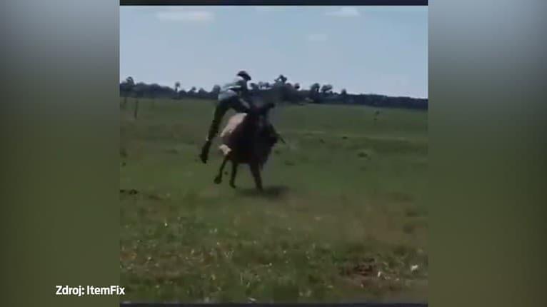 Mal to byť hrozivý pád, v sekunde bolo všetko ináč: Salto na koňovi by mu závidel každý akrobat